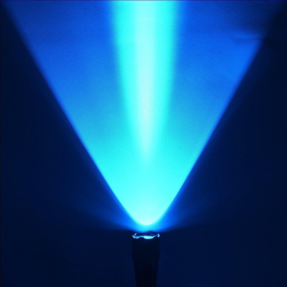 6445592_bluelight-5